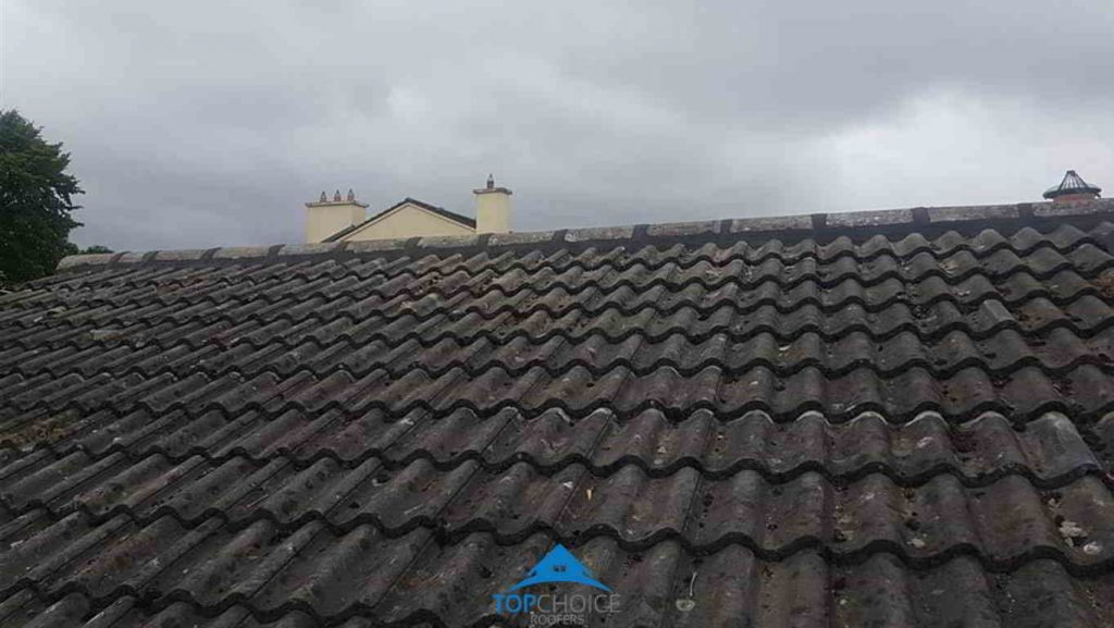 Ridge Repair Dublin