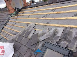 Experienced contractors for all types of roofing in Dublin