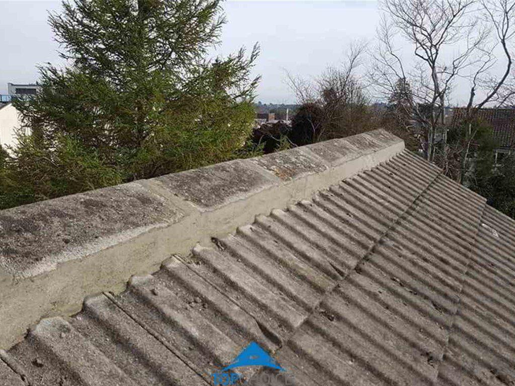 Ridge Tile Repair Service