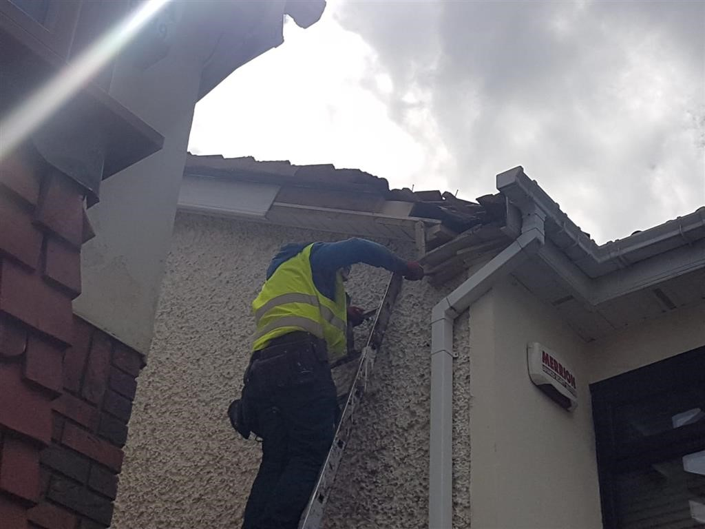 Top Choice Roofers We Excel At Roofing Repairs In Dublin